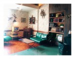 Dream living room  1950s hollywoodstudios